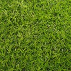Искусственная трава Betap IRENE высота ворса 18 мм